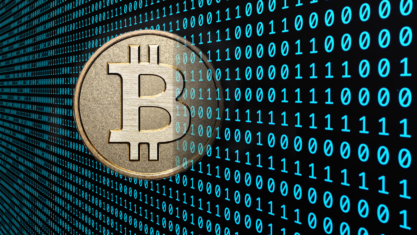 Raj samani bitcoins latvia vs netherlands betting expert sports