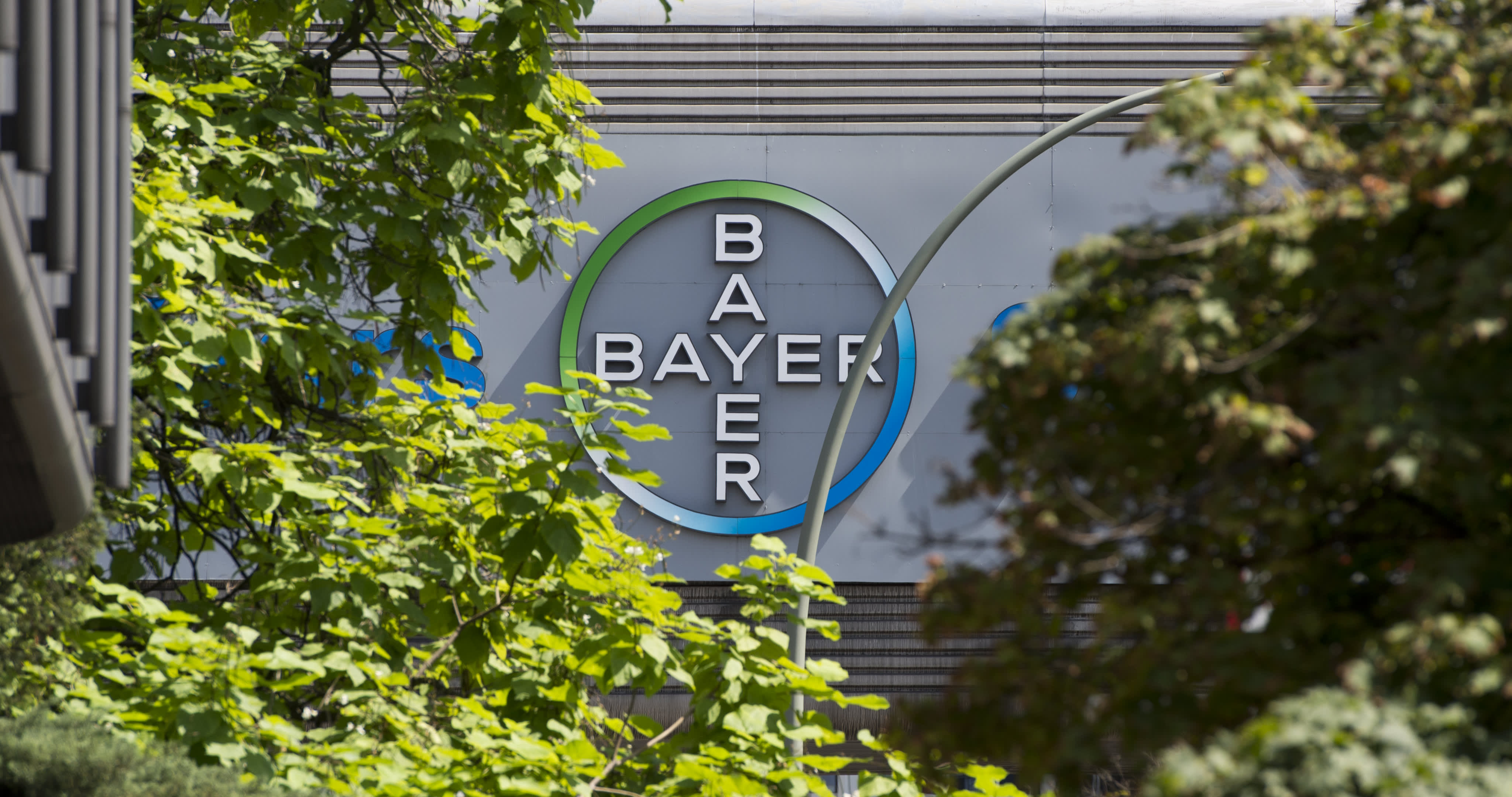 No plans to acquire rival Syngenta: Bayer CEO