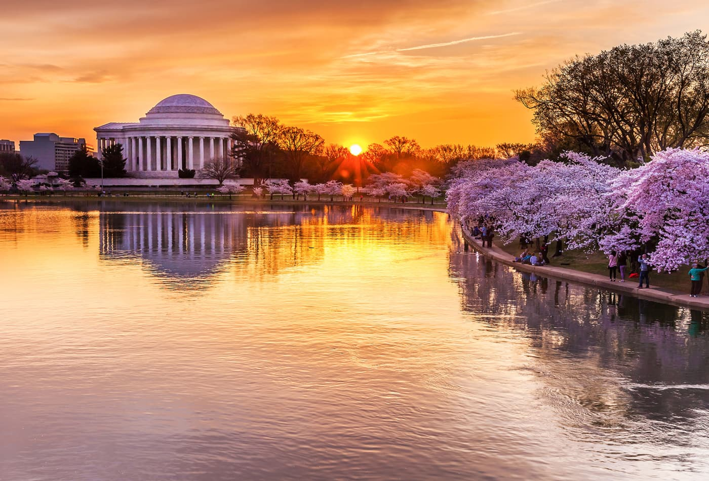 Washington's monuments, including Jefferson Memorial, FDR & MLK in danger due to rising tides