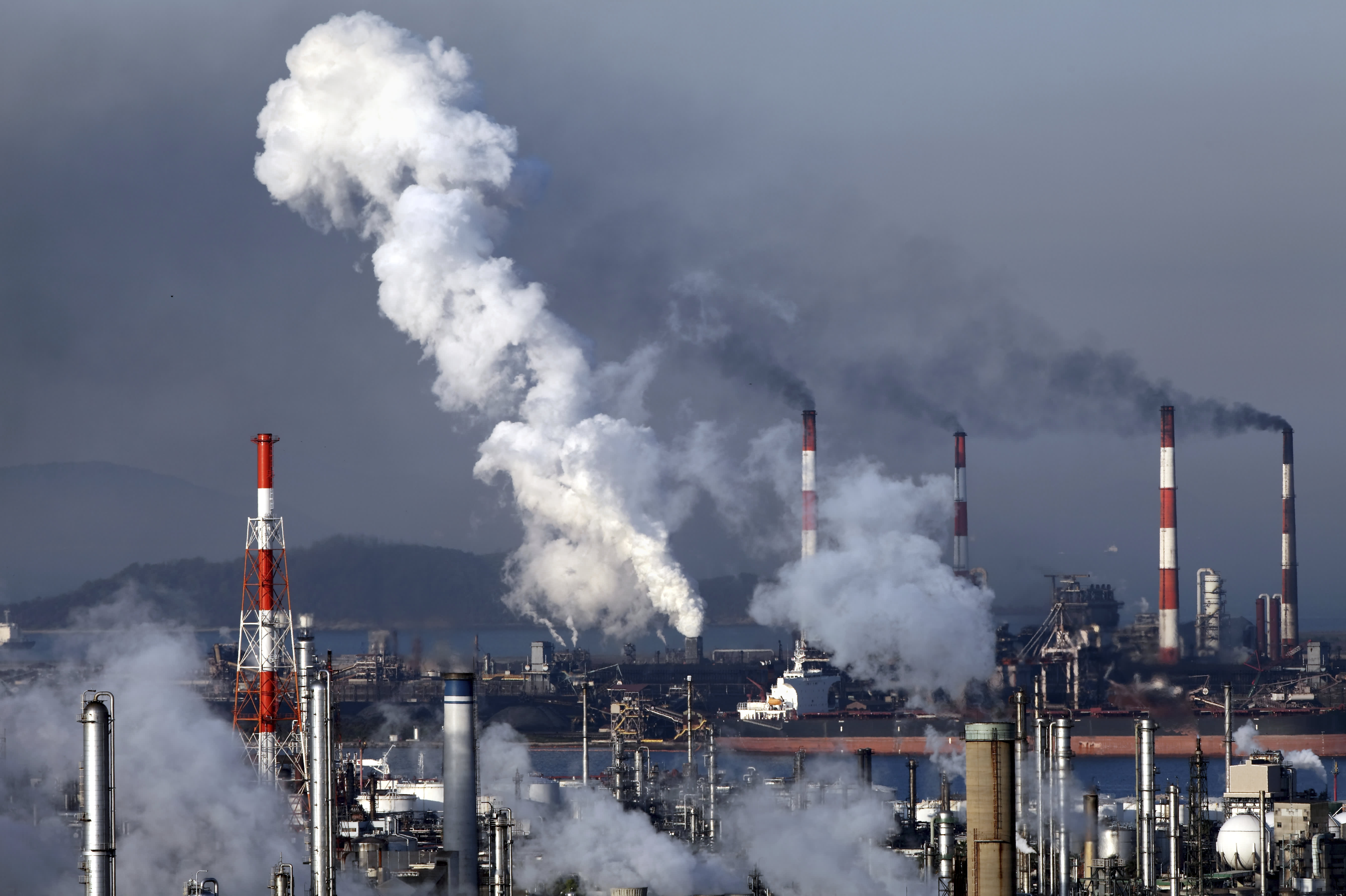 A carbon tax is 'single most powerful' way to combat climate change, IMF says