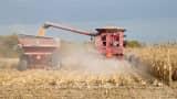 A farmer harvests corn in Burlington Iowa.