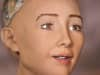 Sophia, a female android from Hanson Robotics