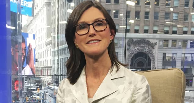 Cathie Wood loves the setup for her stocks after sell-off, expects big returns from her strategies
