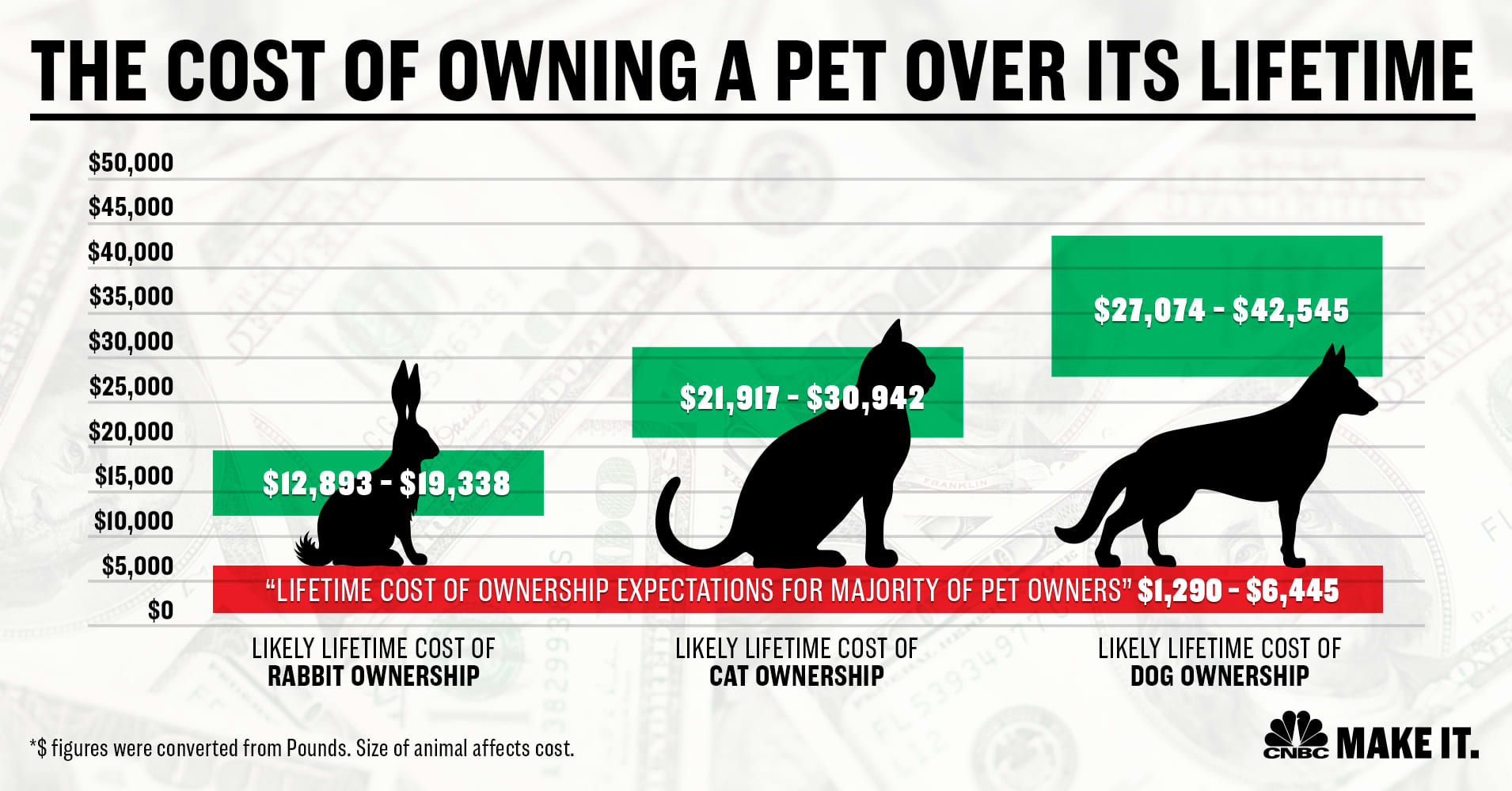 Make it Lifetime costs of pets graphic
