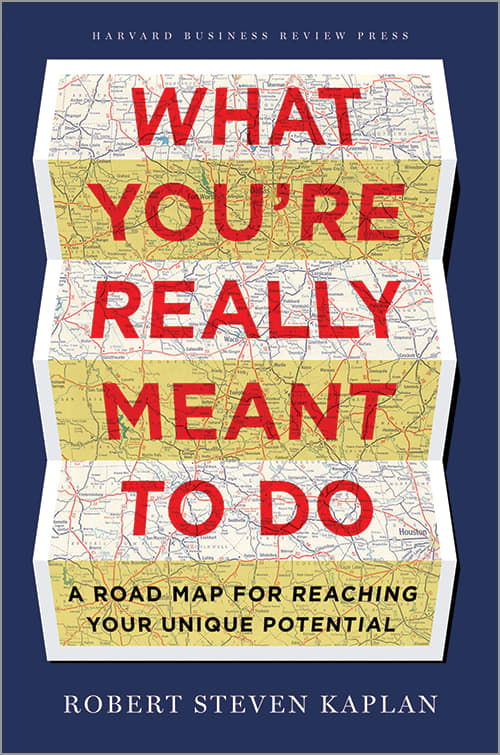 Book Cover: What you're really meant to do