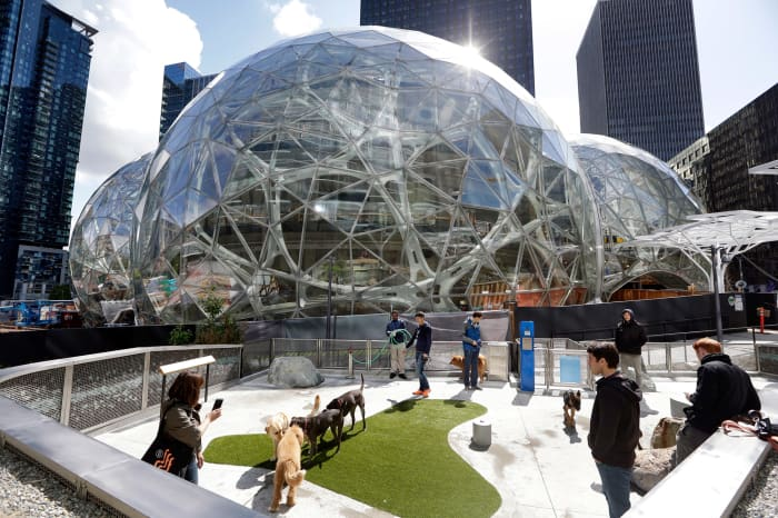 ONE TIME AP: Amazon campus Seattle Washington dogpark