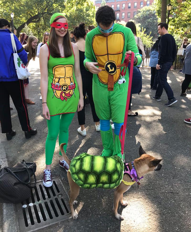 CNBC: Dog in Ninja Turtles costume