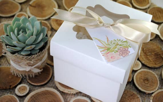 gift guide: plant in box