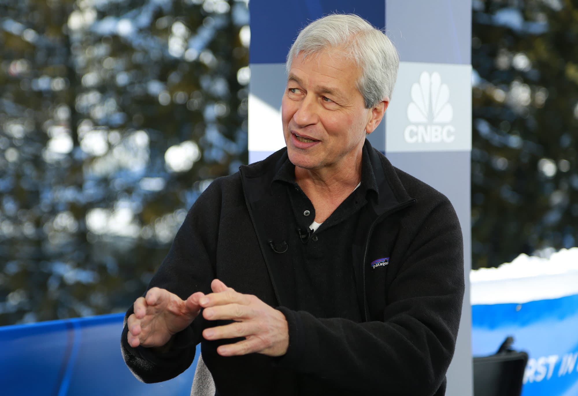 Dimon says the only financial market bubble out there right now is in sovereign debt