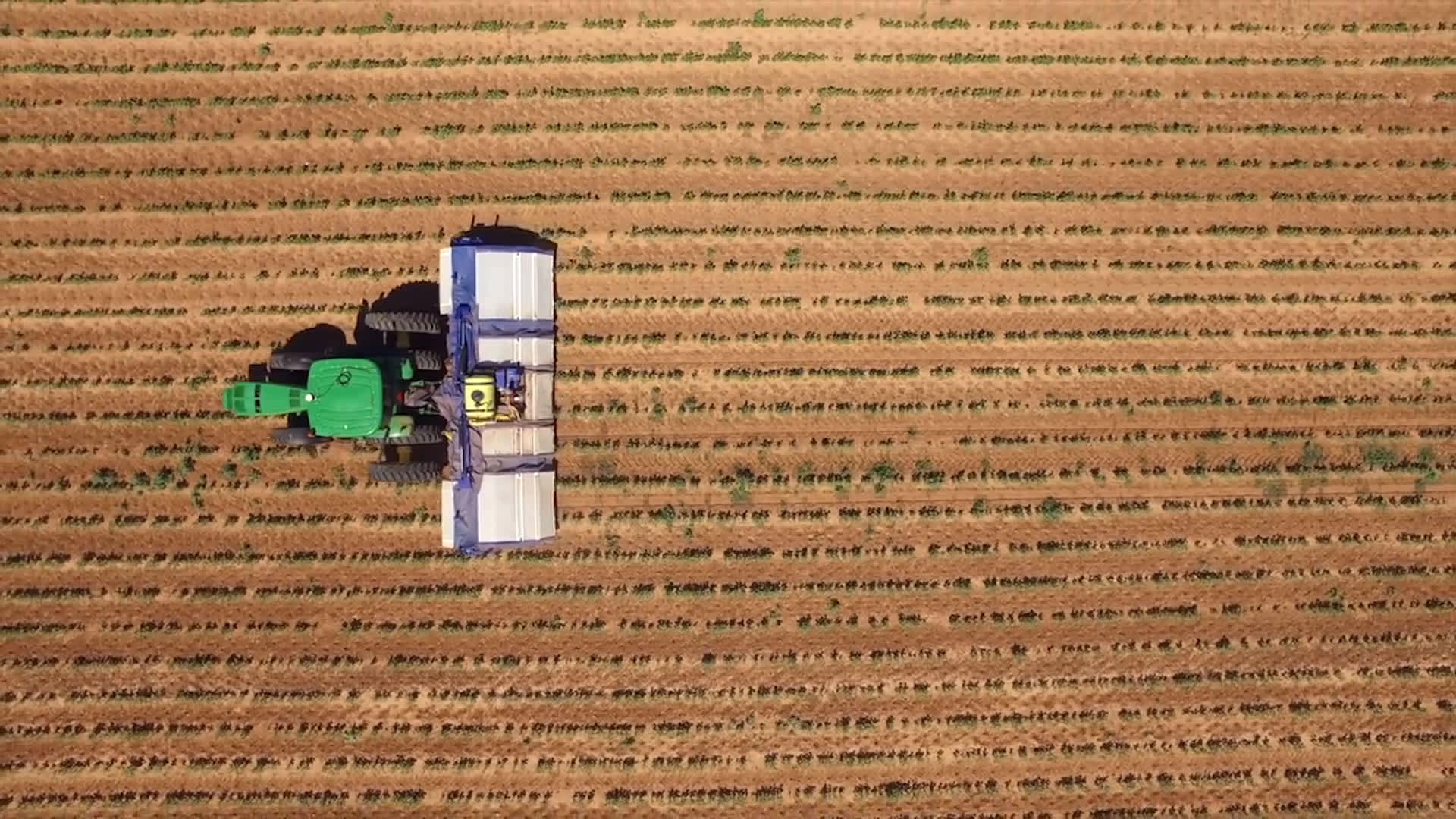 Farms face a severe labor shortage and these robots are here to help