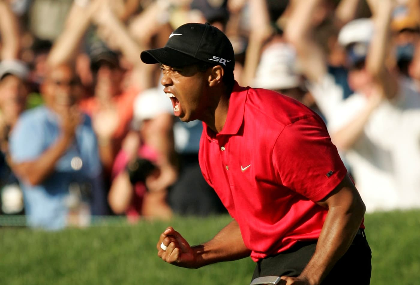 90a0f09bb255 U.S. golfer Tiger Woods celebrates after making a birdie on the 18th hole  during the final round of the U.S. Open golf championship at Torrey Pines  in San ...