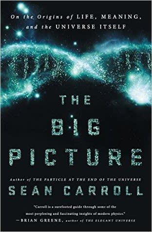 Book: The big picture