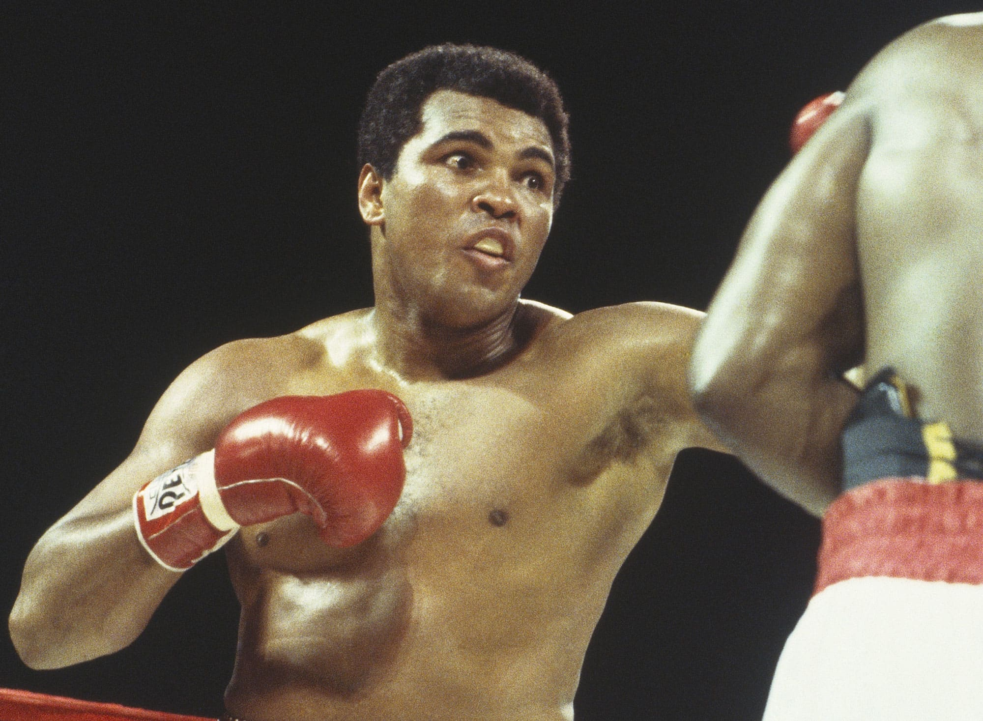 3 lessons boxing legend Muhammad Ali taught daughter Laila about success and money