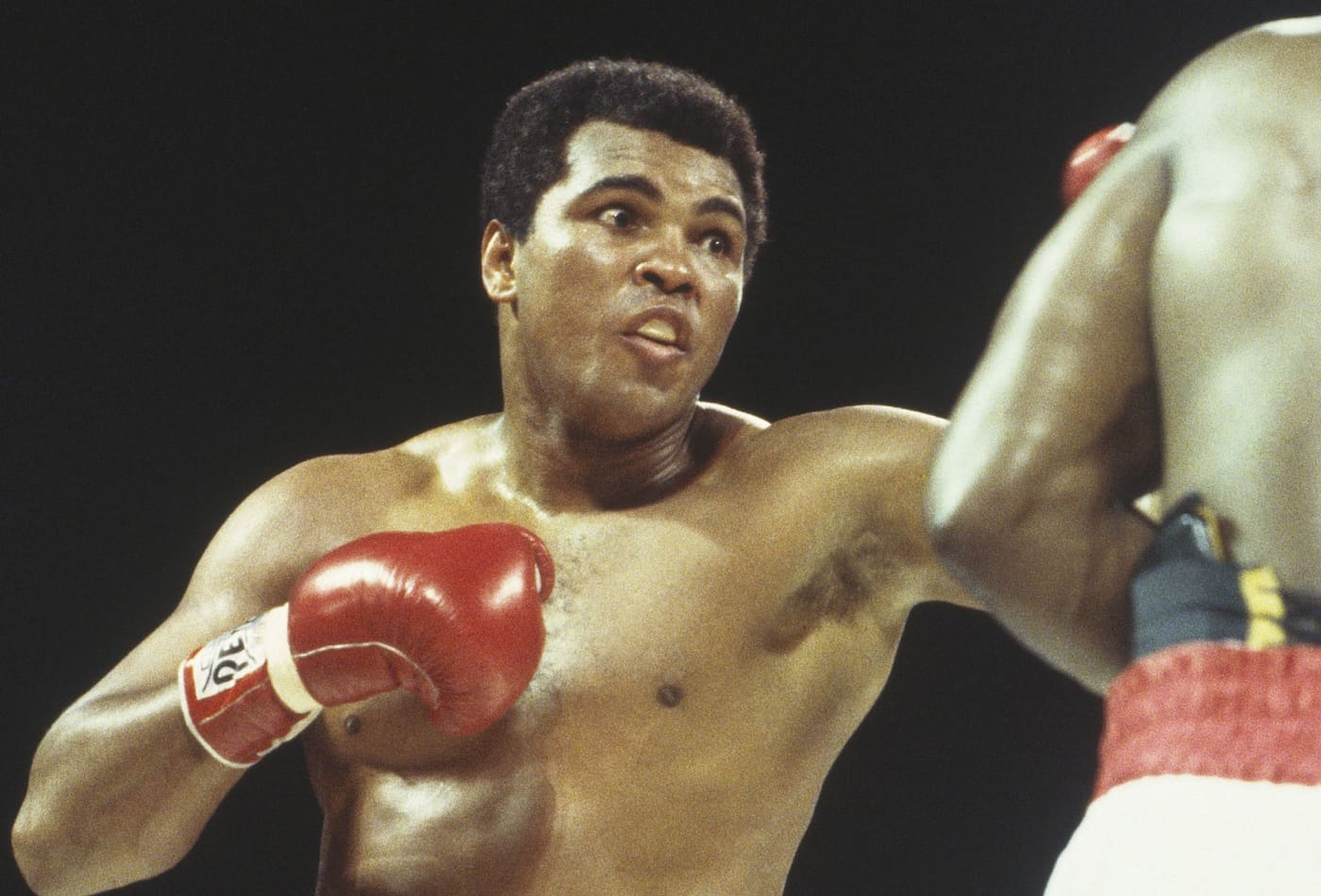 Success lessons boxing legend Muhammad Ali passed on to