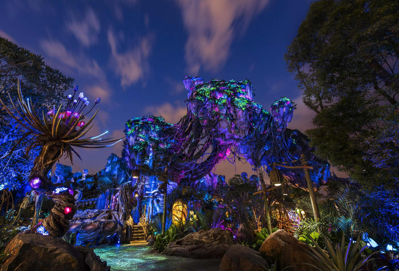 Win contest to stay overnight at Disney World's Avatar
