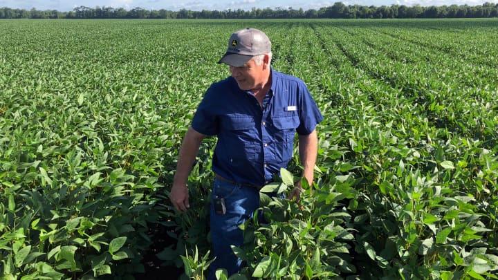 Trump farm bailout to provide $6 billion in initial relief