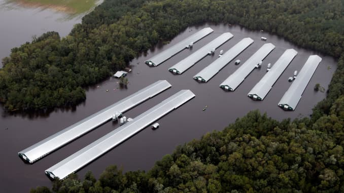Florence hits North Carolina agriculture, drowns 1 7 million