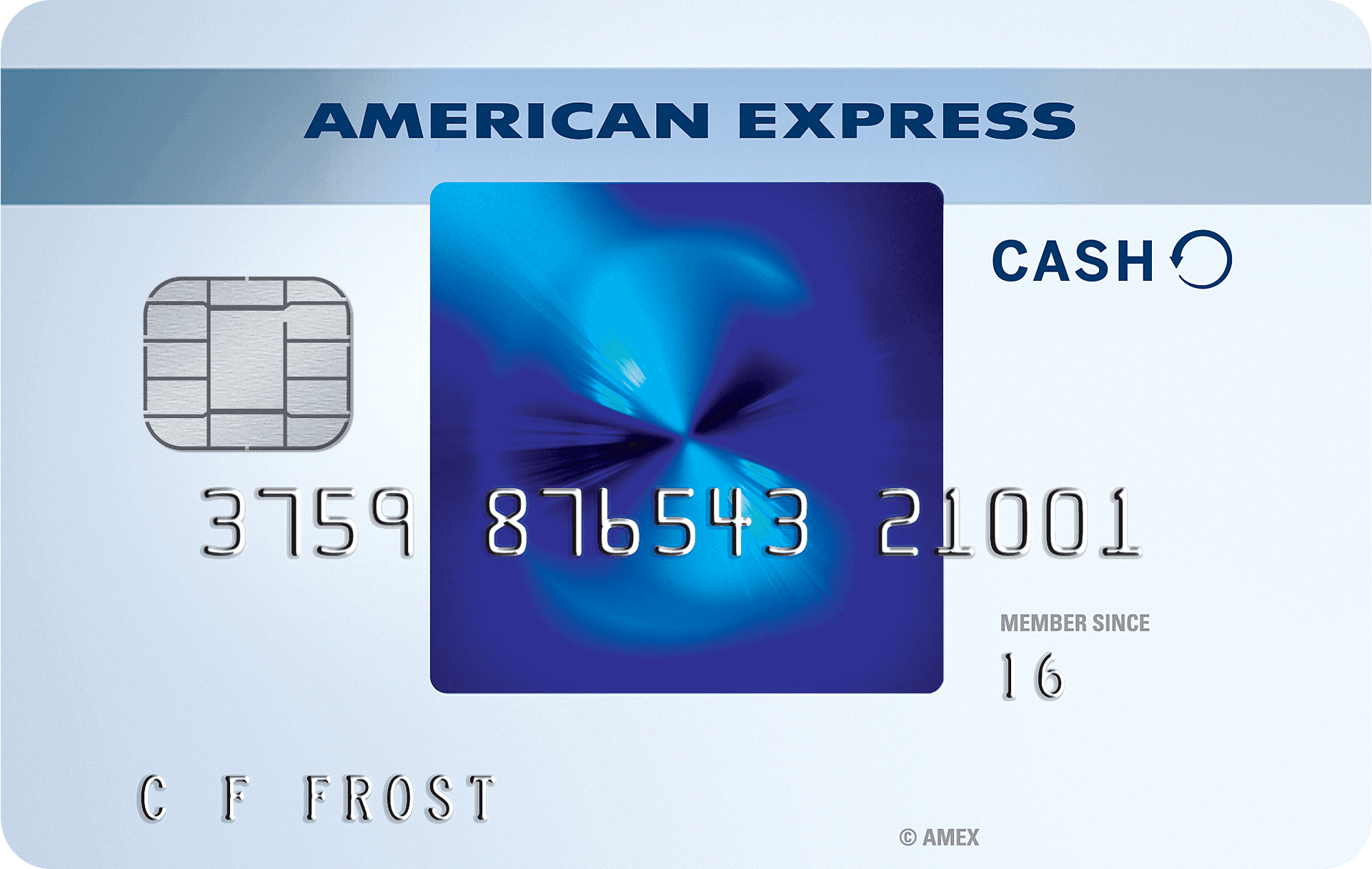 credit card: Blue Cash EveryDay