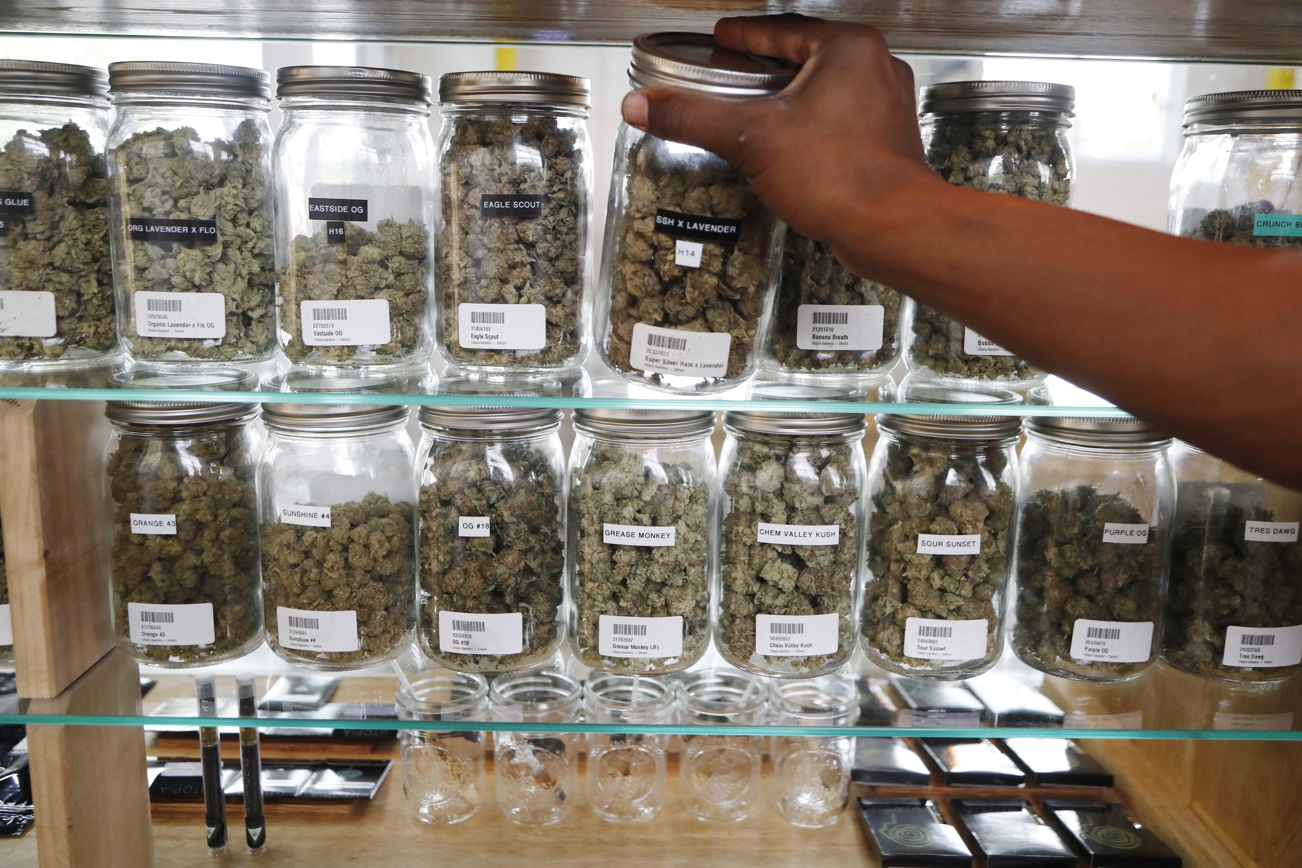 Marijuana industry gets boost after Michigan OKs