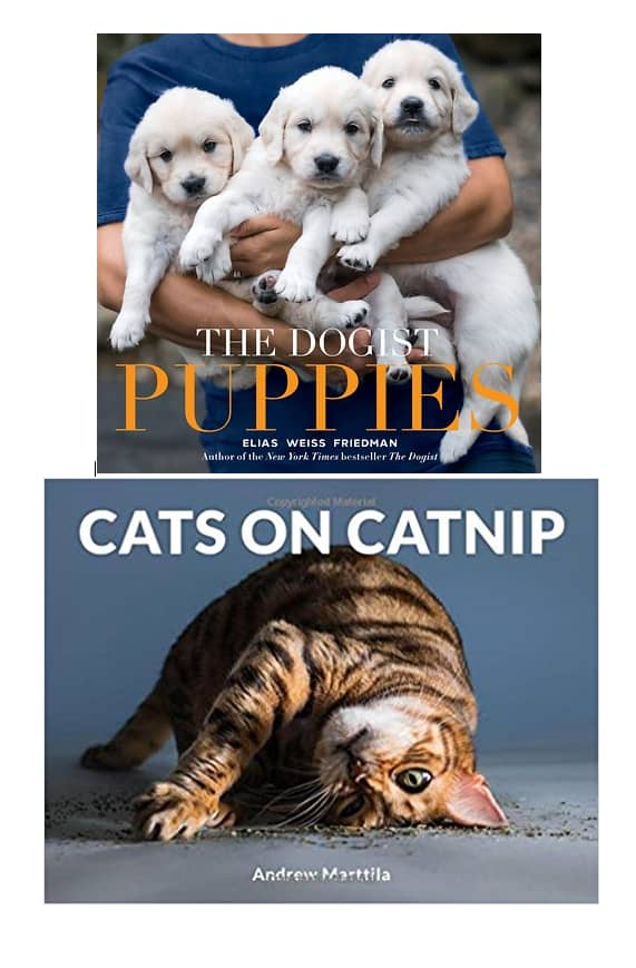 pup and cat books