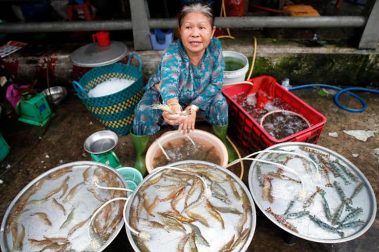 GP: Vietnam Seafood Trade 190117