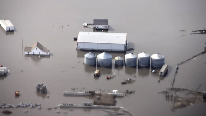 Corn futures hit 5-year high as flooding, more rain could add to planting woes in heartland