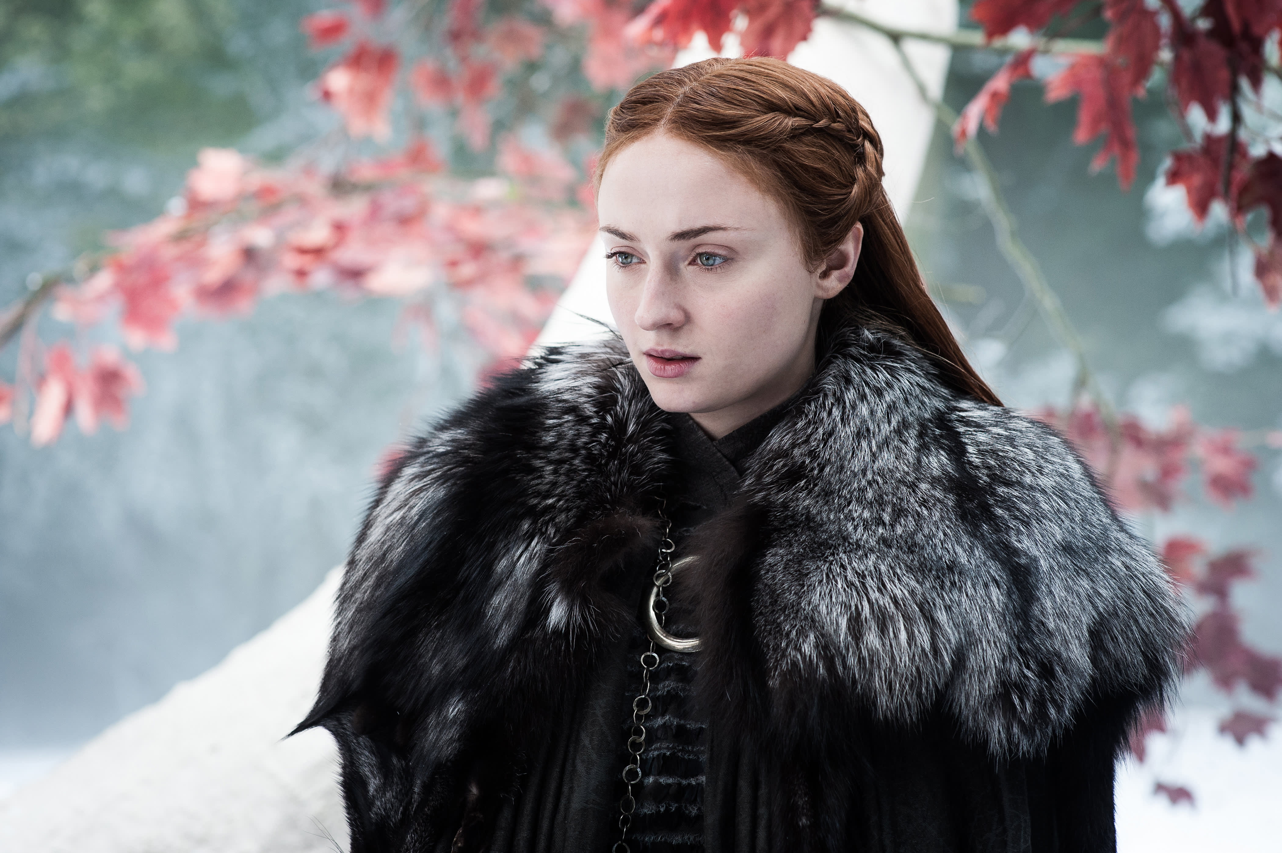 Sansa is the best leader on 'Game of Thrones,' says Columbia Business School professor