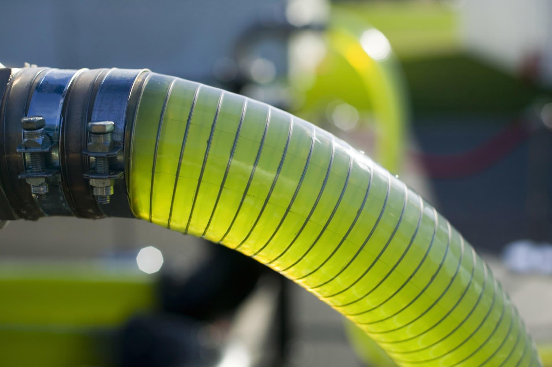 GP: AlgaeLink Algae growing system