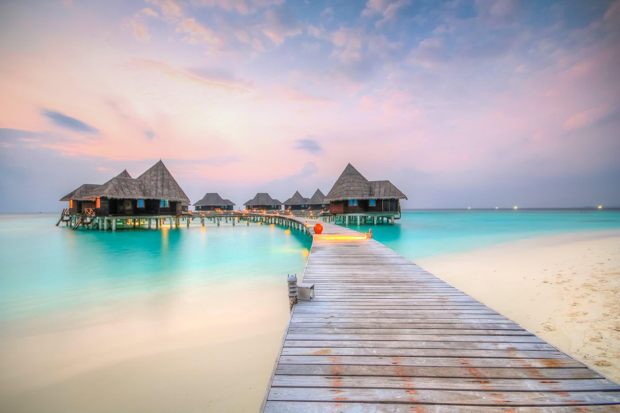 luxury maldives resort wants summer intern to help rescue