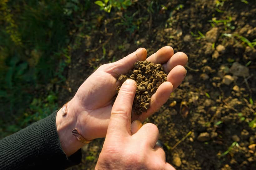 Getty: Farmer hands in dirt