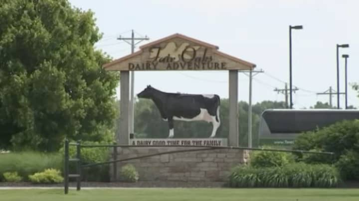 Alleged animal abuse at Indiana farm puts 'ag-gag' laws in spotlight