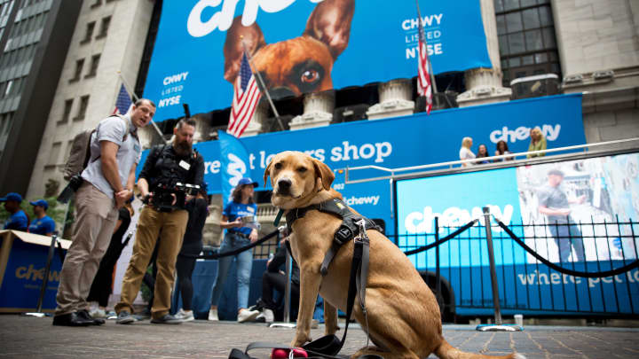 Jim Cramer: Put Chewy on the shopping list and buy it on a pullback