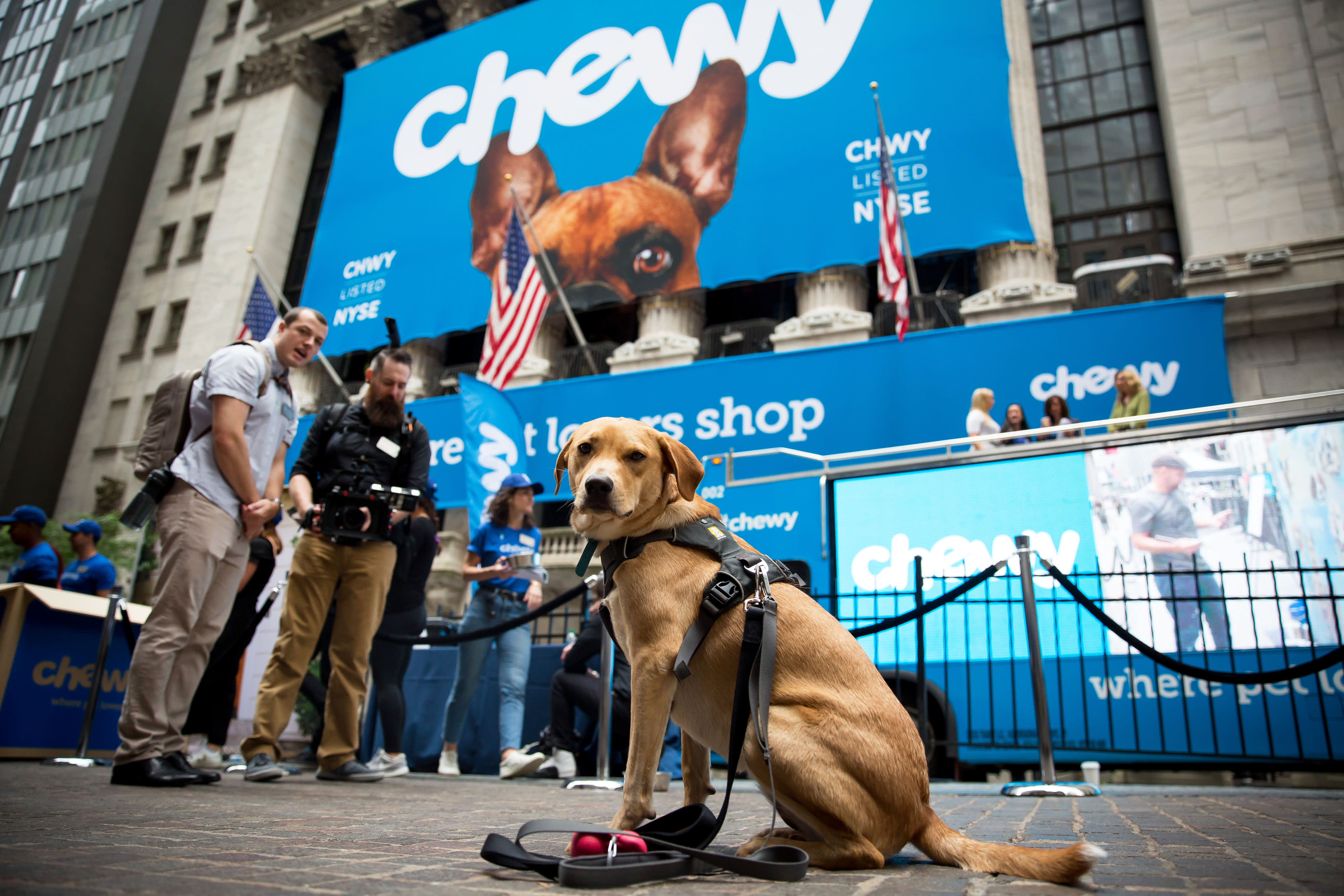 Chewy stock rises after release of its first results since IPO, loss narrows in line with forecast