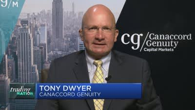 A Fed rate cut would 'kick-start' economic growth and lead to new market highs, Wall Street bull Tony Dwyer says