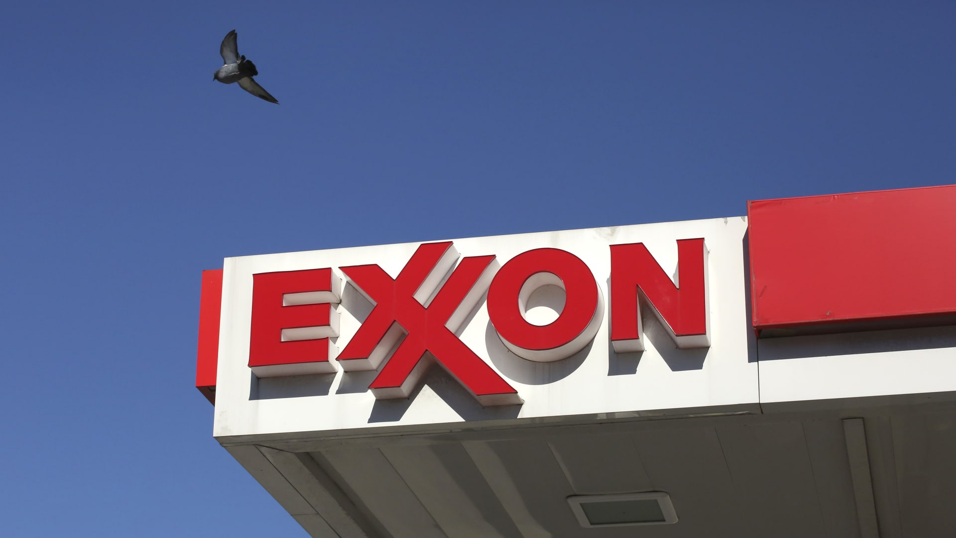 A pigeon flies over a Exxon mobil gas station on October 25, 2018 in Gutenberg New Jersey.