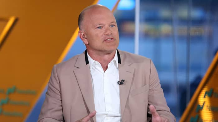 Bitcoin bull Mike Novogratz says he is shocked by the speed of crypto adoption