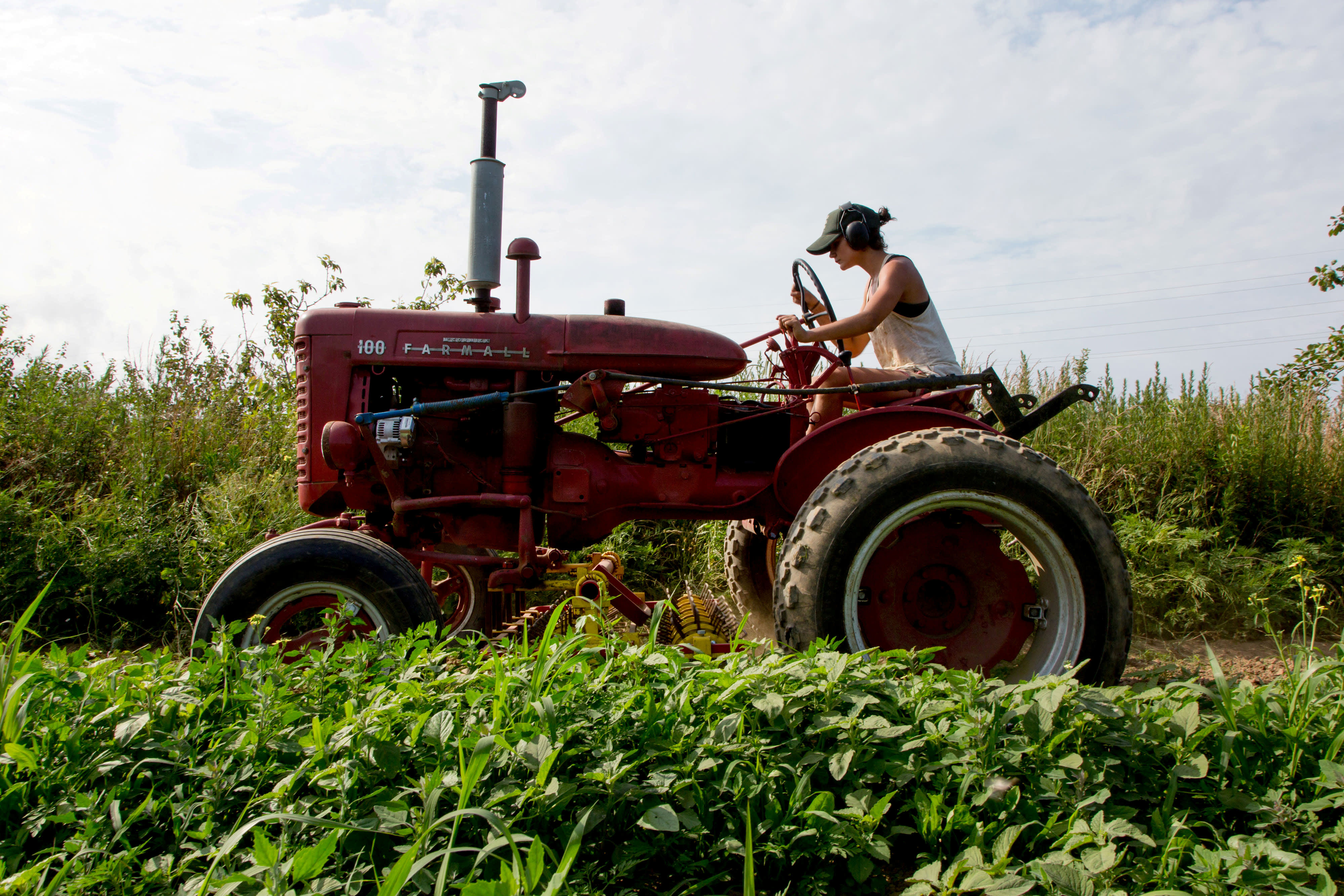 China pulling out of US agriculture is a devastating blow to an already struggling industry thumbnail