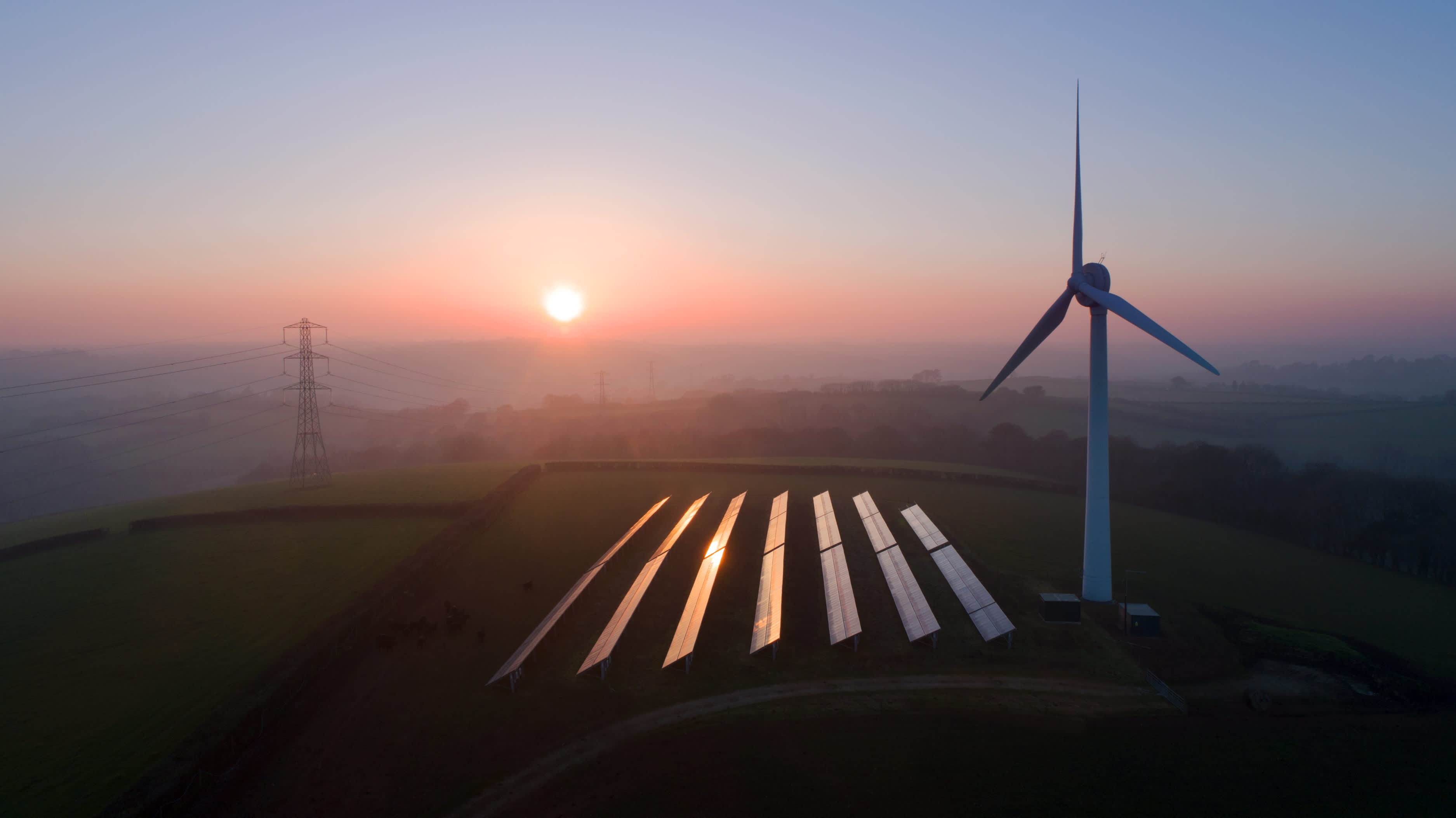 Renewables grew at fastest rate in two decades last year, IEA says in new report