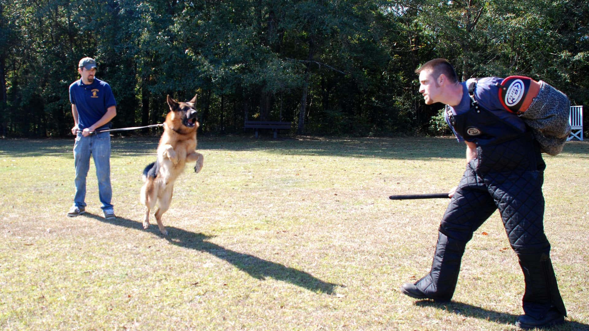 A Harrison K-9 trainer works with an executive protection dog.