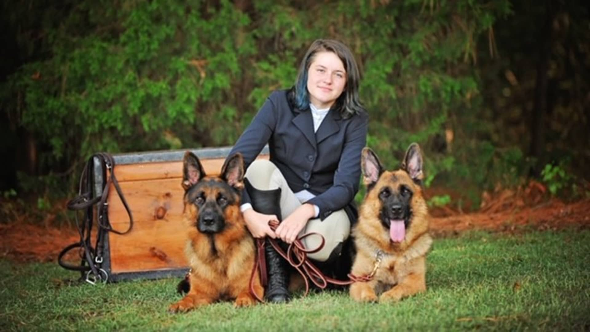 Hardy ($47,000) and Happy ($42,000) two Harrison K-9 dogs headed to Guadalajara, Mexico to protect a wealthy family.