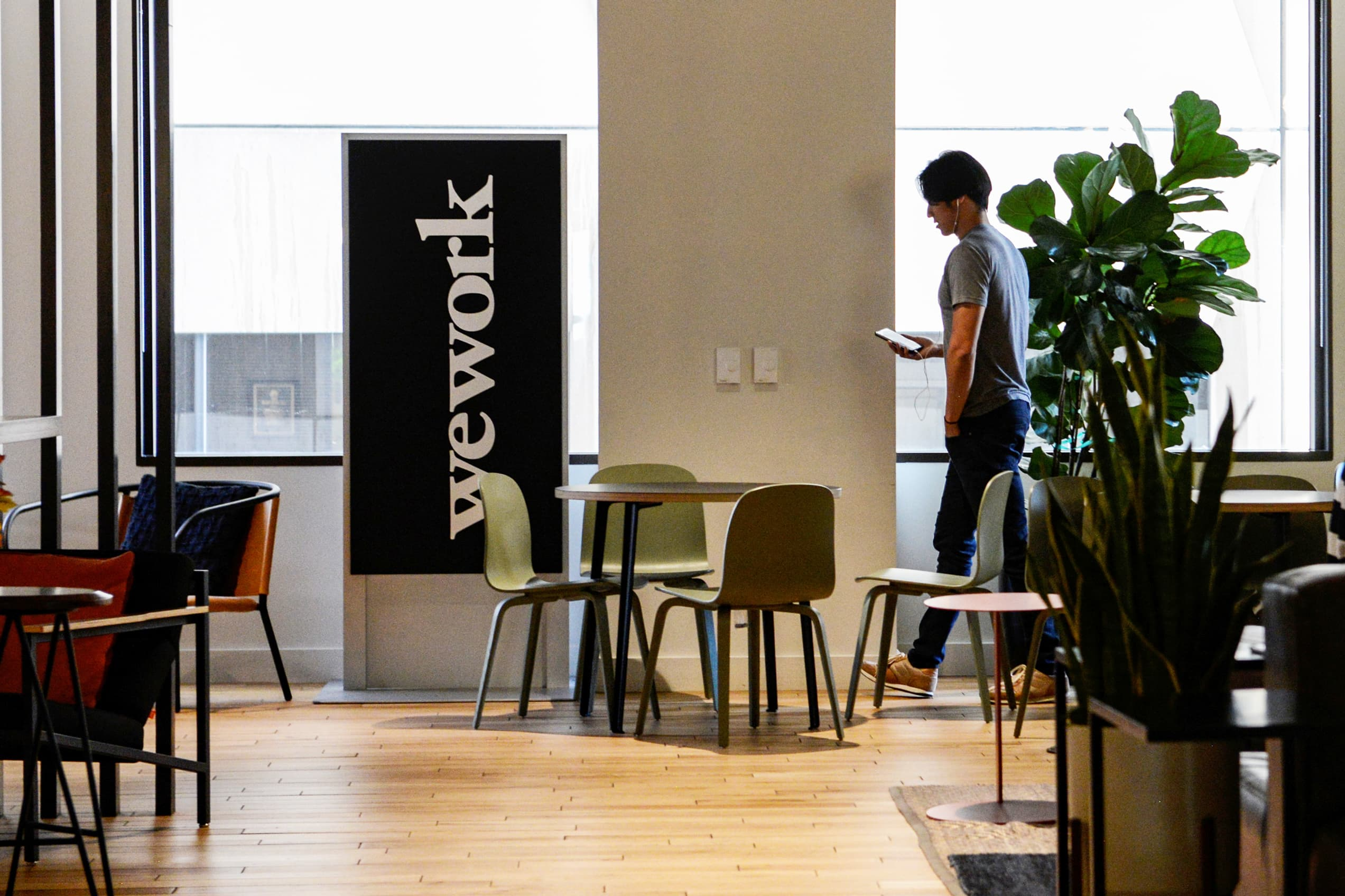 The public market showed discipline with WeWork, says Roger McNamee