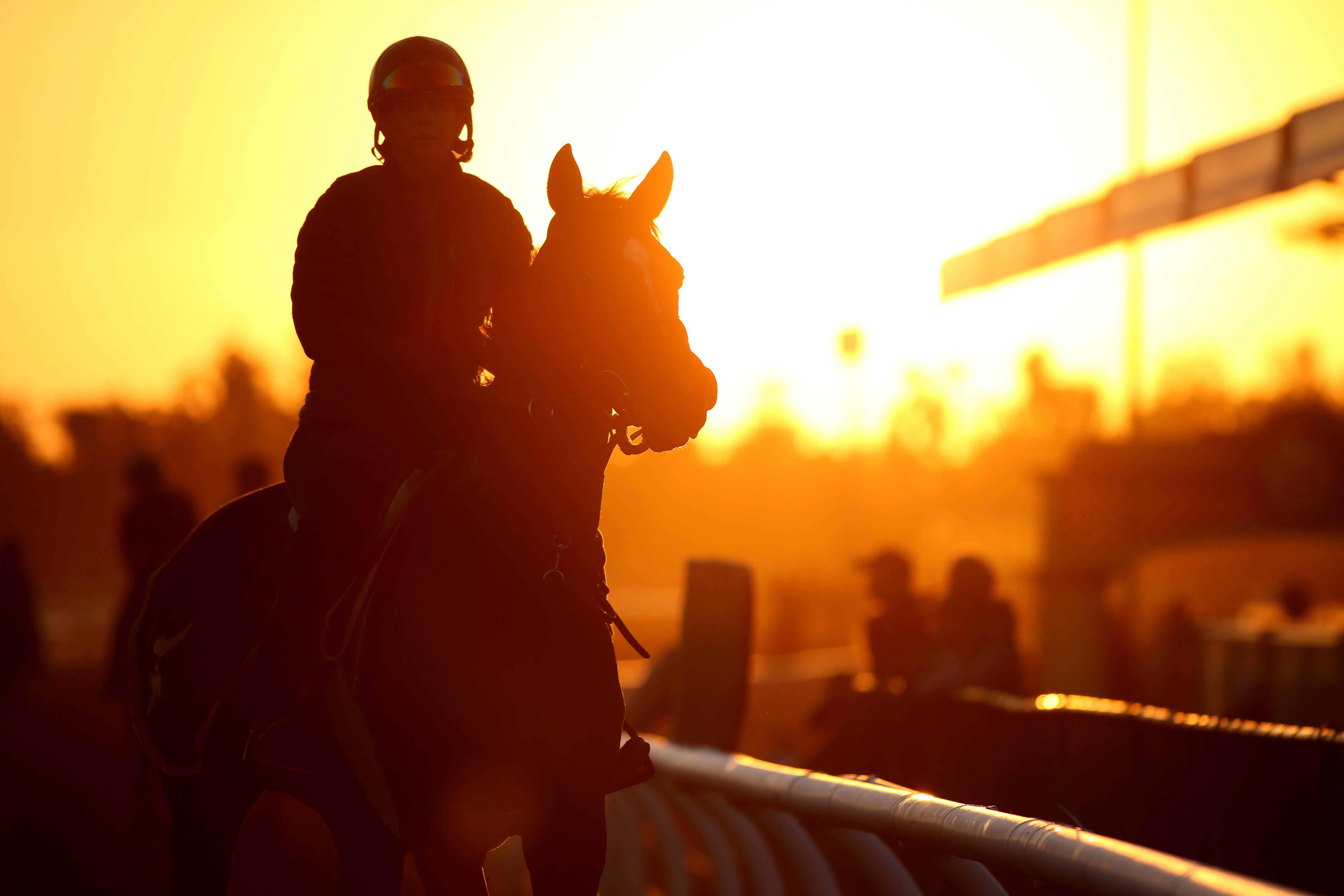 The CEO of US Concrete spent $120,000 for a stake in a horse that's favored to win $1 million at the Breeder's Cup