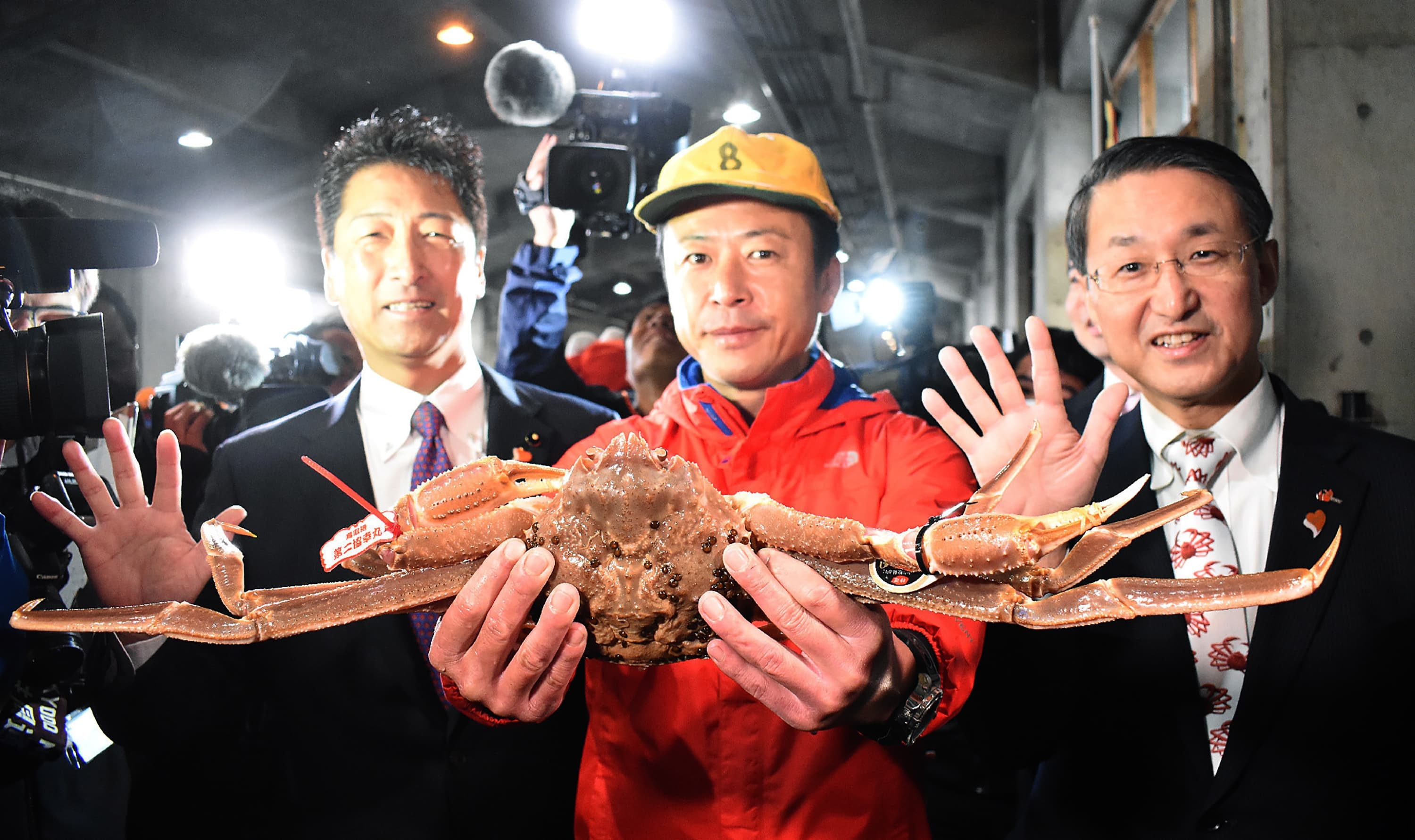 Record Breaking Snow Crab Sells For Thousands At Japanese Auction