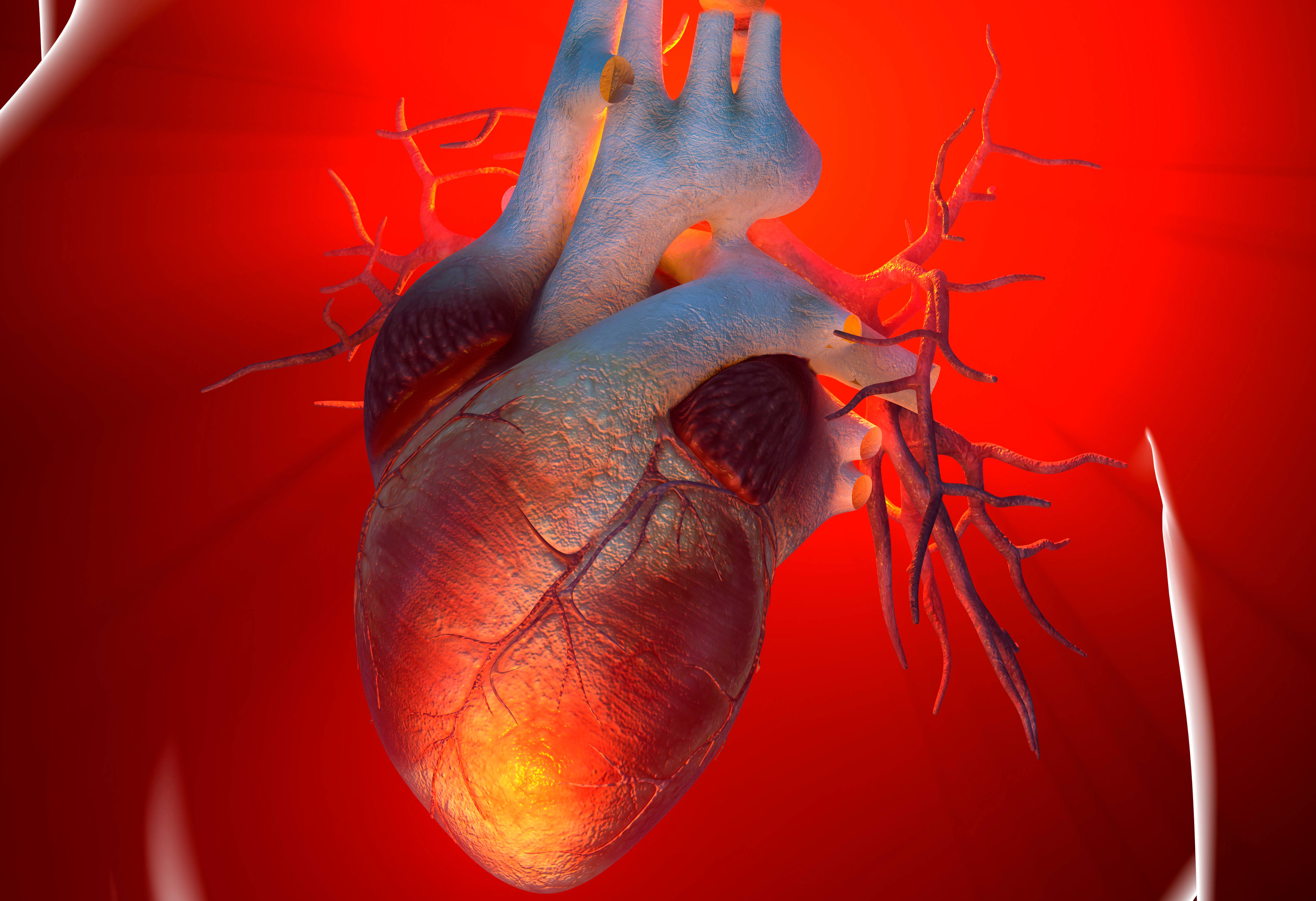 Study: Cancer patients at higher risk of dying from heart disease