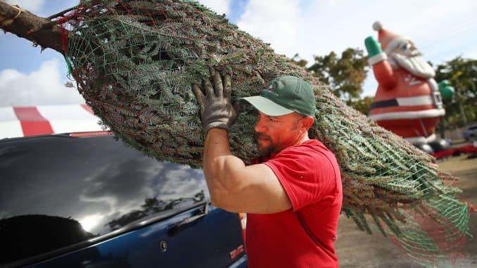 GP: Christmas tree purchase 171218