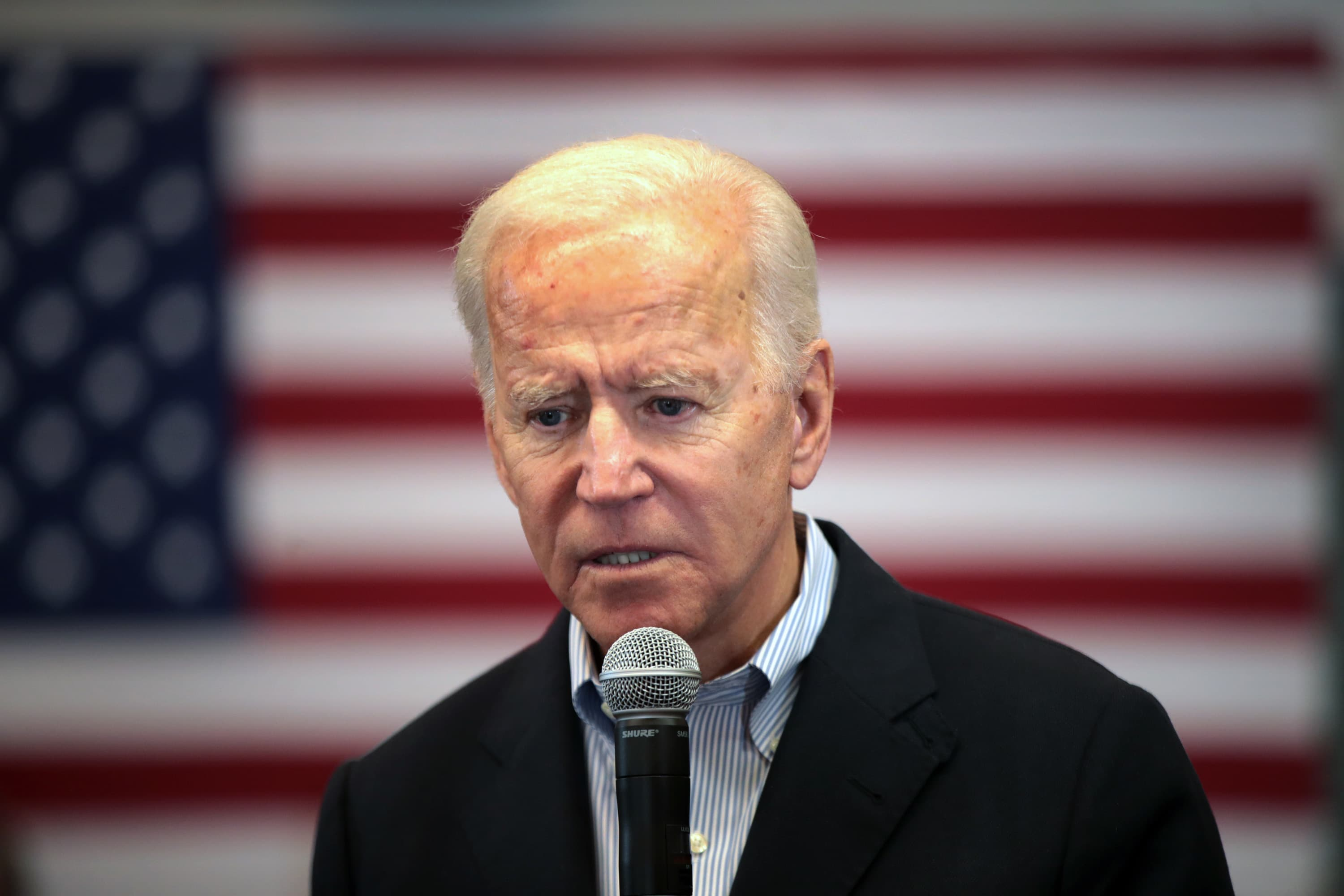 Biden's Democratic challengers don't really want to win — here's the proof