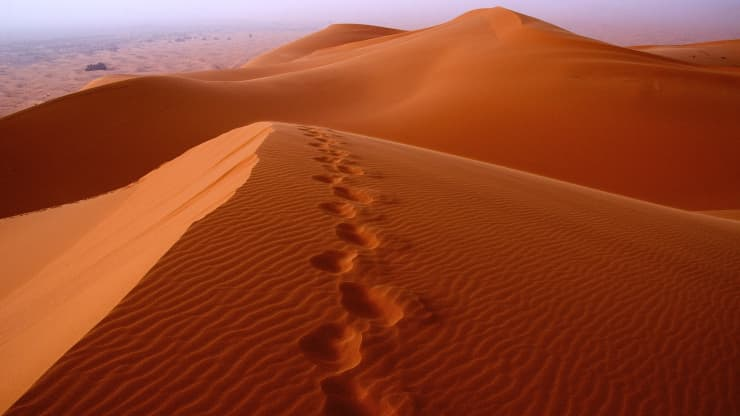 GP: Footprints in desert sand 191210