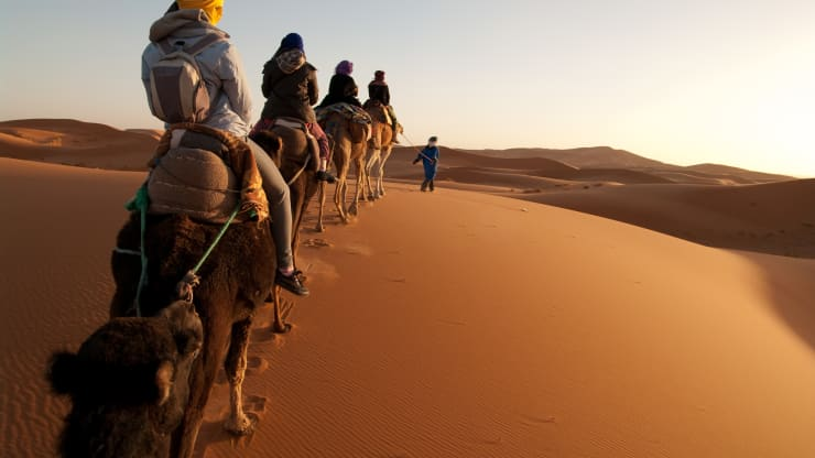 GP: Tourists on train of camels in Sahara led by guide 191210