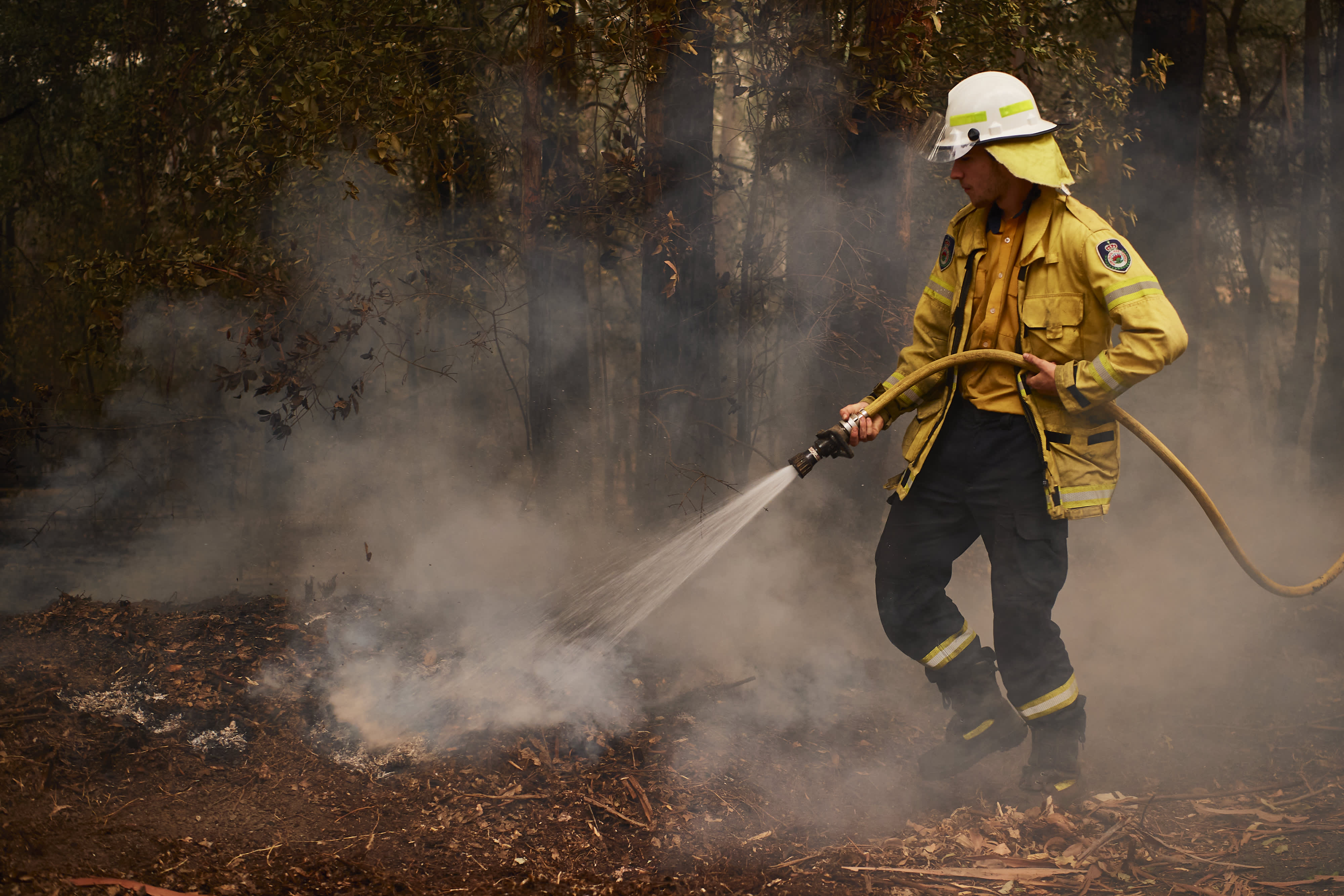 How to help victims of the Australia bushfires