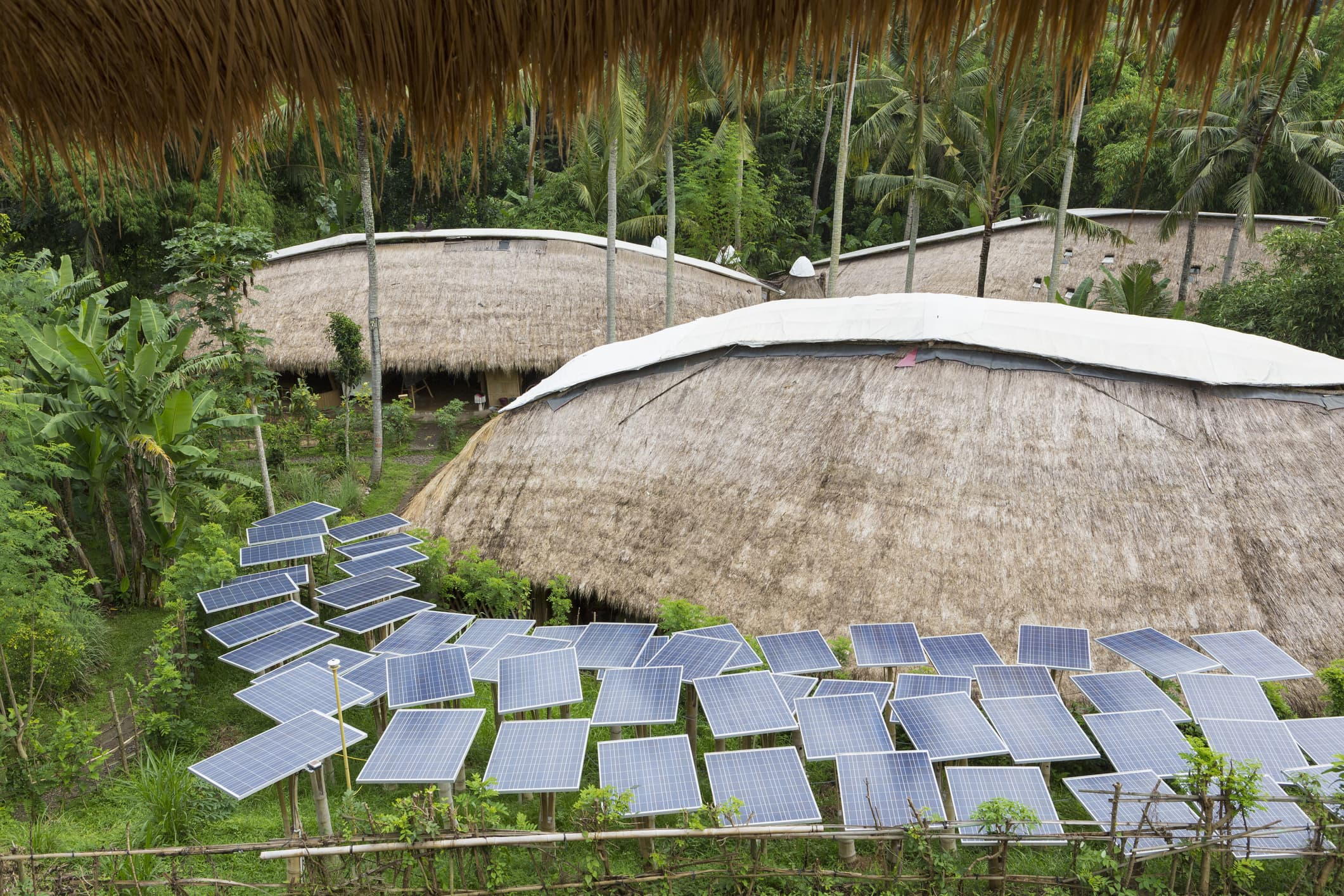 Global sustainability standards are needed to curb climate crisis, says environmental director